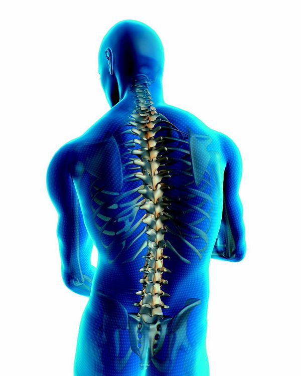 Spinal Fusion Back Surgery Specialists